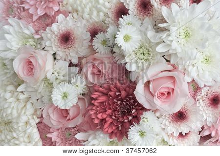 Background Of Daisies And Roses