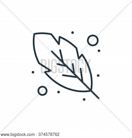 feather icon isolated on white background from brazilian carnival collection. feather icon trendy an