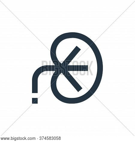kidney icon isolated on white background from medical collection. kidney icon trendy and modern kidn