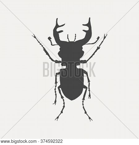 Black Silhouette Of A Stag Beetle Isolated On White Background. Insect Vector Illustration.