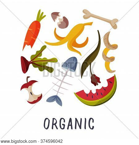 Organic Waste, Garbage Sorting, Segregation And Separation Of Rubbish Vector Illustration On White B