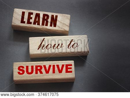 Text On Wooden Blocks Learn How To Survive. Surviving In Crisis Times Business Concept. Surviving Du