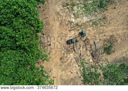Logging or deforestation of forest. Clearing land for agriculture