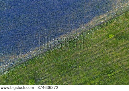 Flat Edge Of A Field Of Lilac Flowers Of Delphinium And Green Grass, Aerial View, Diagonal