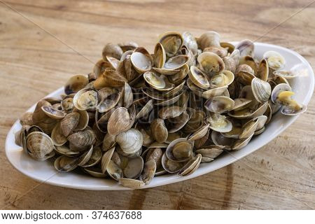 Small Clams Called Telline On A Course Dish