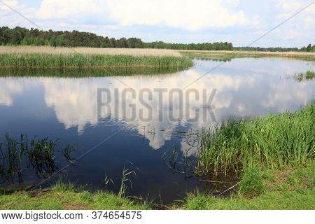 Landscape Of Seliger Lake Estuary In Summer