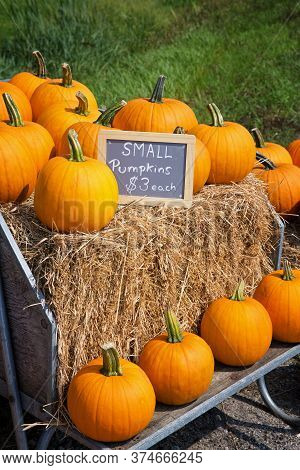Pumpkins For Sale At The Roadside, Displayed On Hay Bales In A Wooden Cart.
