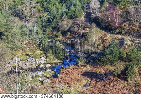 Charming Brook Flowing Among Forested Hills In County Tipperary, Ireland
