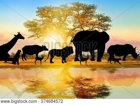Silhouette Of Wild Animals Lined On African Acacia Tree Background At Sunrise Light Reflected On A P