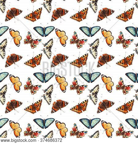 Seamless Pattern With Coloful Butterflies Isolated On The White Background. Background With The Brig