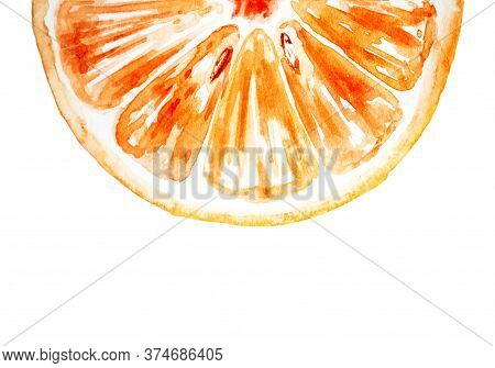 Watercolor Drawing Of Half Of Orange Isolated On The White Background. Handmade Illustration Of Oran