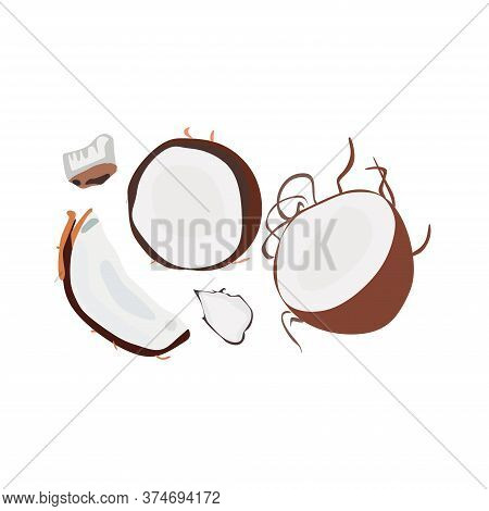 Pieces Of Coconut With Palm Leaves, A Set Of Cut Halves Of White Coconut .vector Illustration Of A F