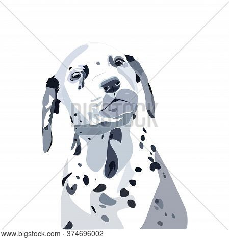 Cute, Cute Dalmatian Dog Looks Straight With Its Head Turned.vector Illustration Isolated On A White
