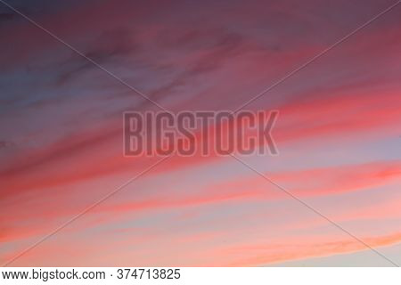 Raspberry Cirrus Clouds At Sunset. Picturesque Clouds In The Sky Backlit By The Sun.