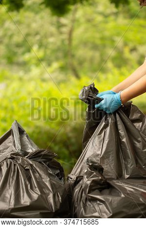 People Collect Garbage In Bags. Hands Tie A Bag. Collect Garbage In Nature. The Concept Of Cleaning