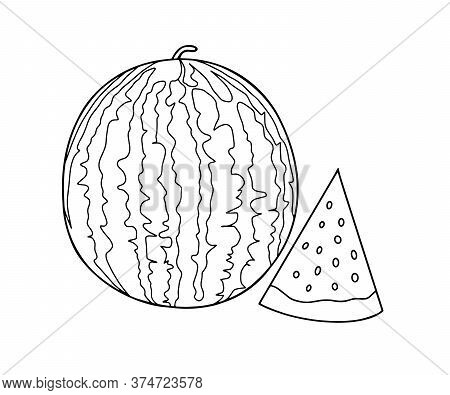 Outline Vector Drawing Of A Watermelon And Slices Of Watermelon Next. Coloring With Watermelon.