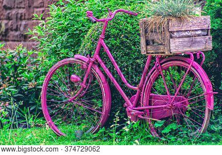 A Purple Bike In Front Of Green Plants