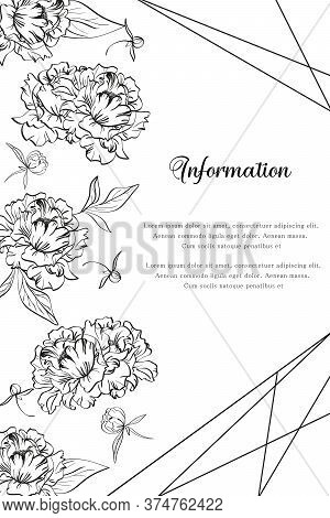Vector Illustration With Gentle Black And White Peony Flowers And Mockup For Design With Text Exampl