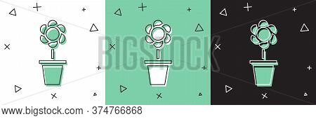 Set Flower In Pot Icon Isolated On White And Green, Black Background. Plant Growing In A Pot. Potted