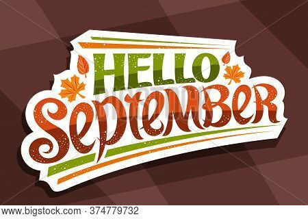 Vector Lettering Hello September, White Logo With Curly Calligraphic Font, Decorative Autumn Leaves