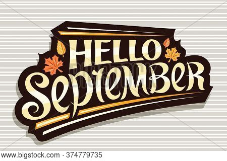 Vector Lettering Hello September, Black Logo With Curly Calligraphic Font, Autumn Leaves And Decorat