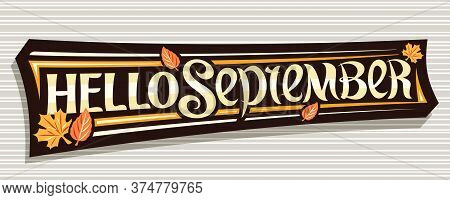 Vector Lettering Hello September, Black Label With Curly Calligraphic Font, Autumn Leaves And Decora