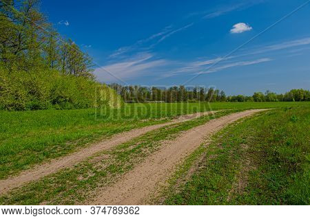 Dirt Road In The Meadow Against The Backdrop Of Deciduous Forest. Spring Season.