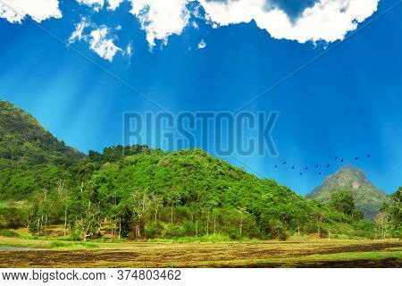 View Of Sunshine On Cassava And Rubber Plantations In The Mountains