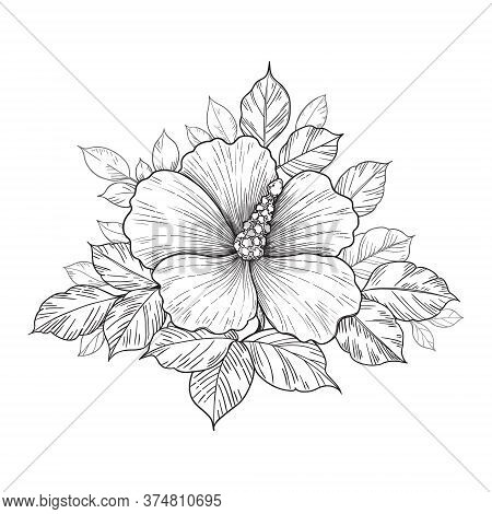 Hand Drawn Bunch With Hibiscus Flower And Leaves Isolated On White. Vector Monochrome Elegant Floral