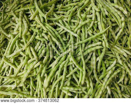 Closeup Of Grains, Background . Avena Sativa Is Scientific Name Of Oat Cereal Grain. Aveia Or Avena.
