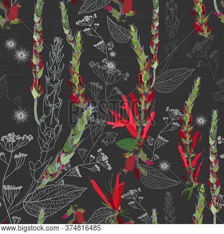 Bright Contrasting Seamless Pattern With Thickets Of Red Flowers, Pods, Leaves And Field Inflorescen