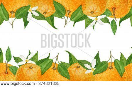 Watercolor Hand Drawn Seamless Horizontal Top Bottom Border Illustration Of Bright Orange Tangerine