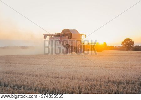 Combine harvester harvesting wheat during sunset on a summer day