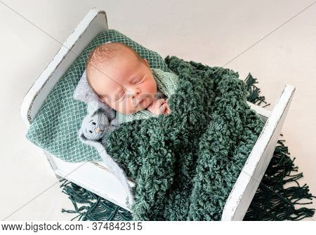 Adorable newborn sleeping on tiny bed with toy friend