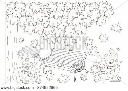 Bench Under Maple Tree Fallen Leaves Umbrella Sketch. Hand Drawn Ink Monochrome Art Design Element T