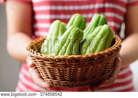 Chayote Squash Or Mirlition Squash In A Basket Holding By Woman Hand, Organic Vegetable