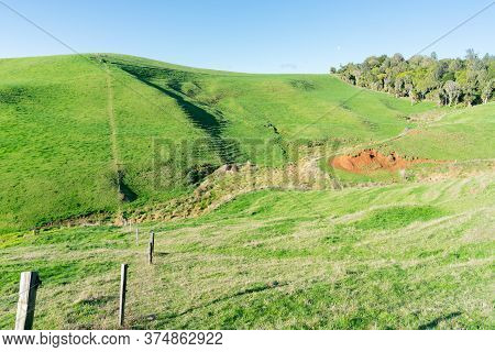 Typical New Zealand Farmland In Rolling Countryside With Fence Dissecting The Fields.