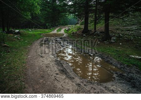 Dark Atmospheric Forest Landscape With Puddle On Dirt Road. Gloomy Coniferous Forest In Mountains In