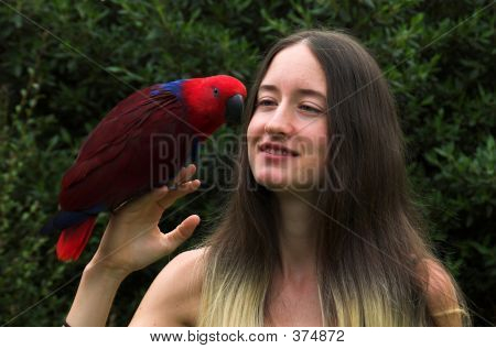 pretty girl with an eclectus parrot poster