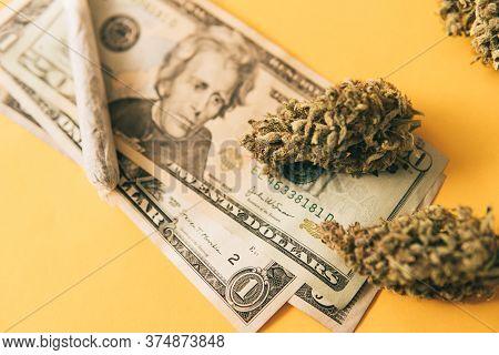 Cannabis Money Black Market. Joint Weed. Cannabis In Economics. Sativa Thc Cbd. Marijuana Weed Bud A