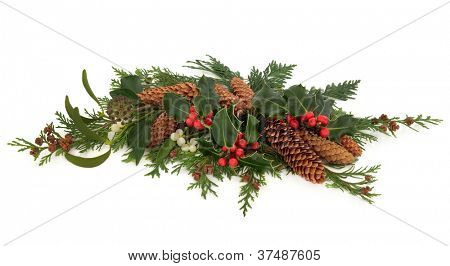 Traditional winter and christmas flora and fauna decoration of holly, mistletoe, ivy, pin cones and cedar cypress leaf sprigs over white background.