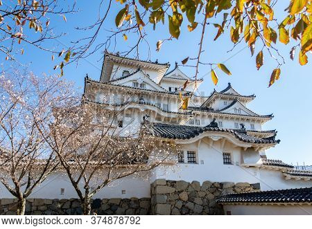 View Of Himeji Castle Through Colorful Autumn Trees With A Blue Sky In The City Of Himeji, Japan.