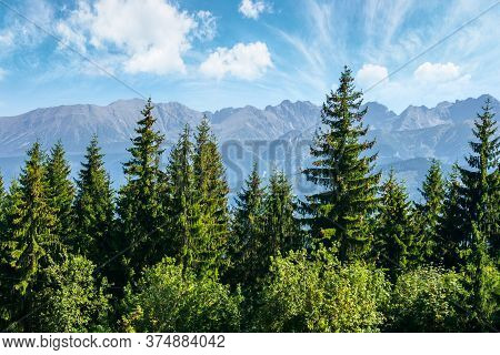 Mountain Landscape Of Poland. Beautiful View In To The Distant Tatra Ridge. Popular Travel Destinati