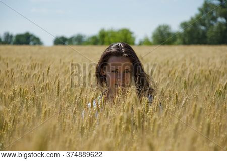 Lit Evening Sun. Girl In Summer Field At Sunset. Sexy Mysterious Woman Look Through Spikelet. Hide I