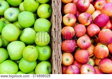 Red And Green Ripe Apples. Ripe Apple Tree Fruits, Closeup. Harvest Apple S, A Bunch Of Fruits On A