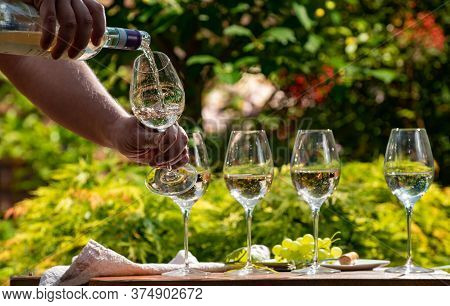 Pouring Of Pinot Gridgio Rose Wine For Tasting In Winery Garden In Veneto, Italy. Glasses Of Cold Dr