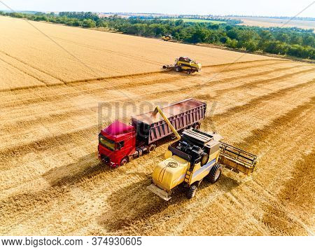Aerial Drone View. Overloading Grain From Combine Harvesters Into Grain Truck In Field. Harvester Un