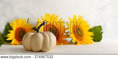 Autumn still life with sunflowers and white pumpkin.