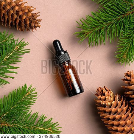 Glass Dropper Bottle With Conifer Essential Oil On Neutral Background With Pine Cones And Branches.