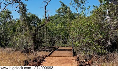 Lava Tubes Ecosystem In National Park Outback Australia
